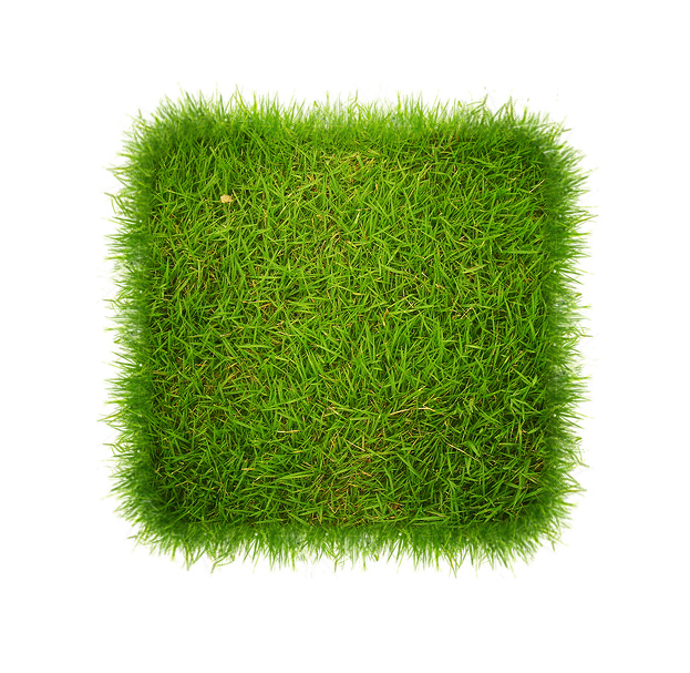 image of Berthoud Sod Installer